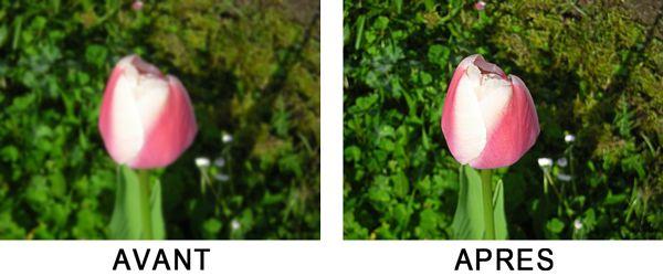 Vue avant et après l'opération